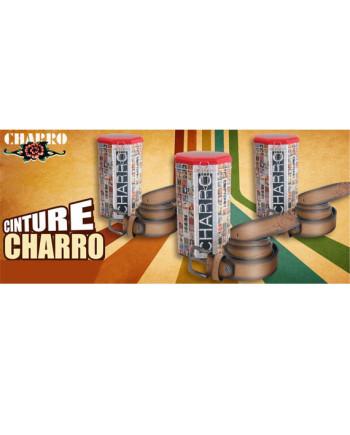 charro_c1295