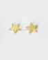 orecchini_stella_dorata